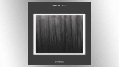 Ex-Dire Straits, Pretenders members featured on new instrumental project Held by Trees